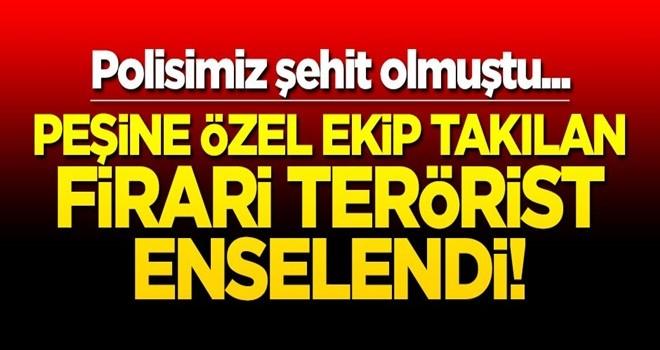 Polisimiz şehit olmuştu... Peşine özel ekip takılan firari terörist enselendi!