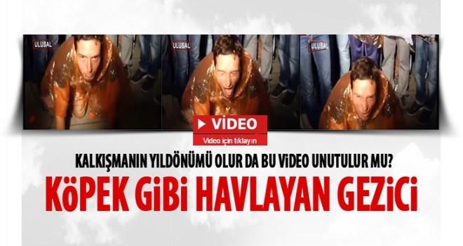 Gezi'den akıllarda kalanlar: Köpek gibi havlayan eylemci