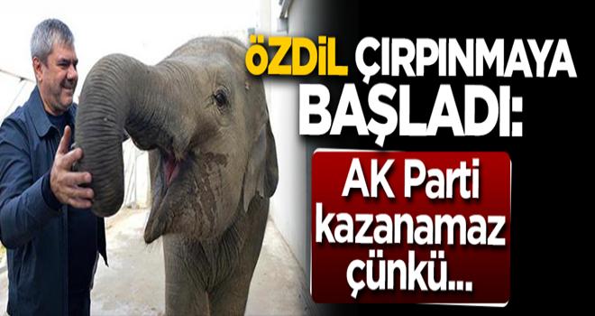 Yılmaz Özdil çırpınmaya başladı: AK Parti kazanamaz çünkü...