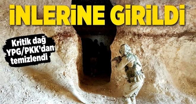 Afrin'de Bafelyon Dağı teröristlerden temizlendi .