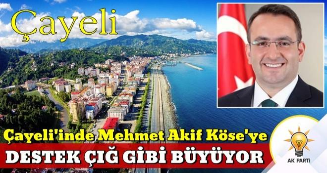 Çayelinde ibre Mehmet Akif Köse'ye döndü!