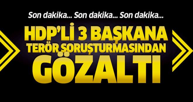 HDP'li Muradiye, Özalp ile Başkale belediye başkanlarına gözaltı.