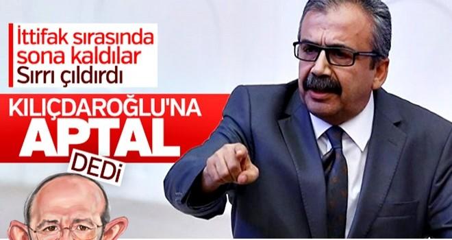 HDP'li Önder, partisini yok sayanlara aptal dedi.