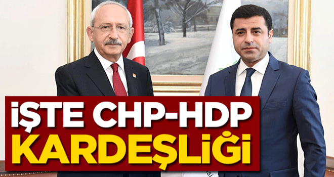 İşte CHP-HDP kardeşliği