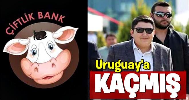 Çiftlikbank'a para kaptıranlar uyarıları dikkate almadı