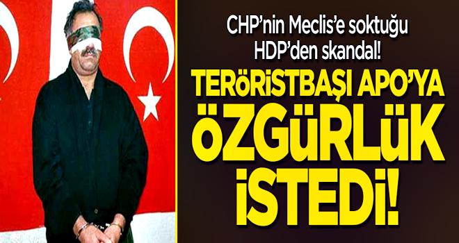 HDP'li Pervin Buldan'dan skandal! Teröristbaşı Öcalan'a özgürlük istedi