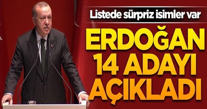 Erdoğan 14 adayı daha açıkladı! Listede sürpriz isimler var