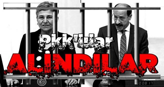 HDP'li Leyla Güven ve Musa Farisoğulları gözaltına alındı