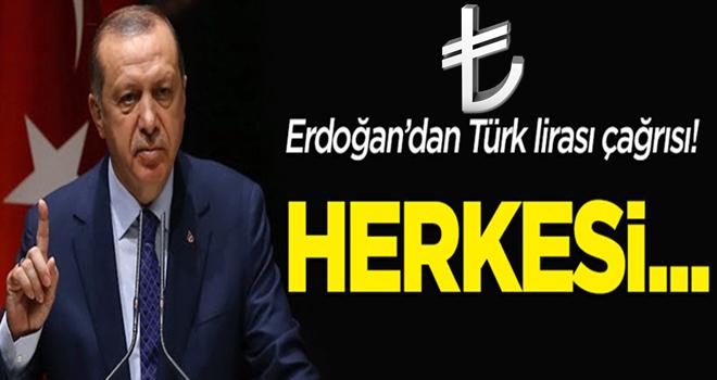 Erdoğan'dan Türk lirası çağrısı: Tüm vatandaşlarımızı...