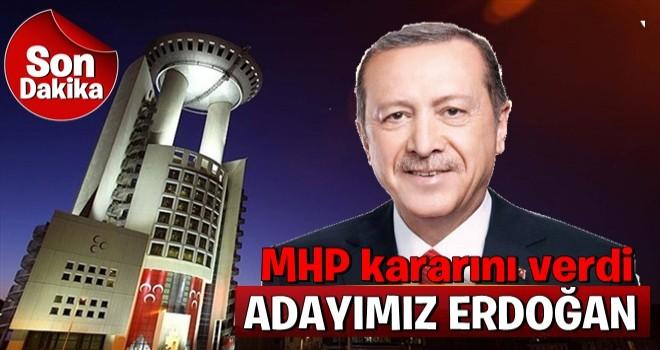 Erdoğan, MHP'nin cumhurbaşkanı adayı