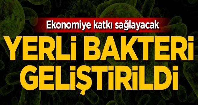 Yerli bakteri geliştirildi