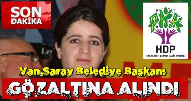 Van'da HDP'li belediye başkanı gözaltına alındı