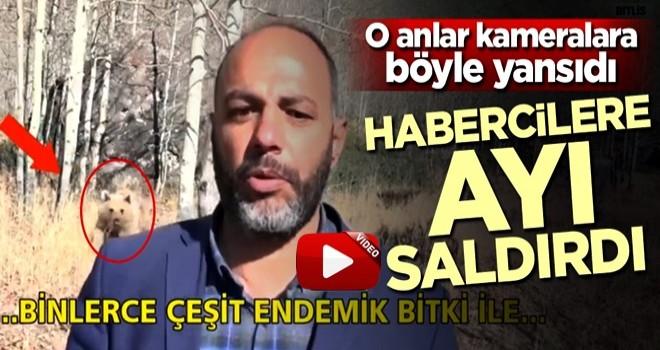 Bitlis'te habercilere ayı saldırdı!
