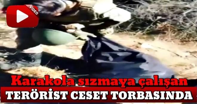 Mehmetçik teröristlere göz açtırmıyor