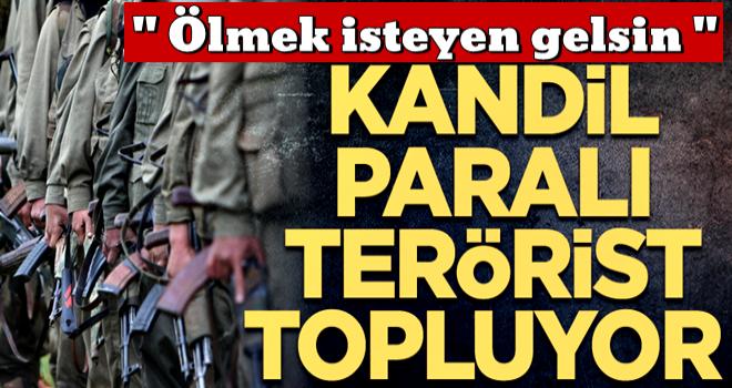 Terör örgütünde büyük çöküş… Kandil paralı terörist topluyor