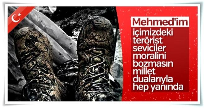 Afrin'de mücadele veren Mehmetçik'in postalları