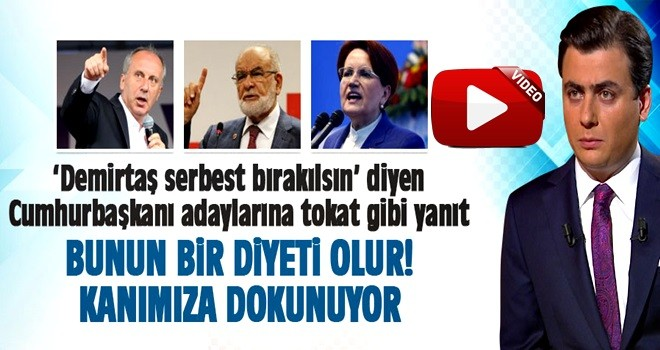 Osman Gökçek: Kanımıza dokunuyor