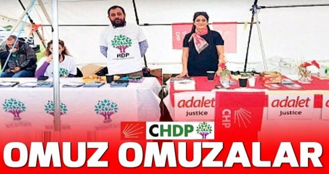 CHP ve HDP'den Avrupa'da ortak seçim çalışması .