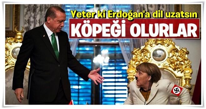 Yeter ki Merkel Erdoğan'a dil uzatsın, köpeği olurlar