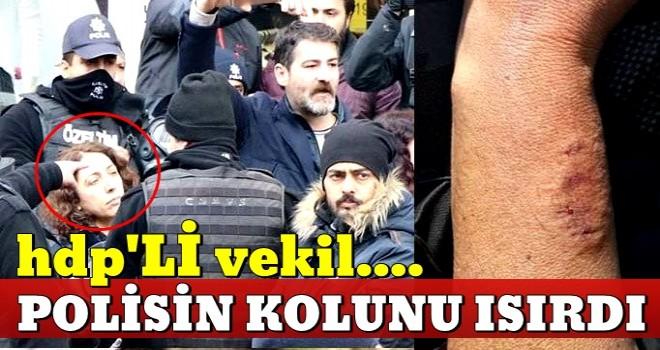 HDP'li vekil Saliha Aydeniz polis memurunun kolunu ısırdı .
