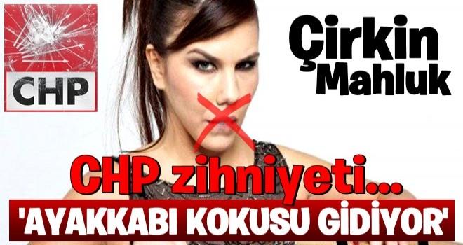 CHP yandaşları sosyal medyada seçmeni böyle aşağıladı .