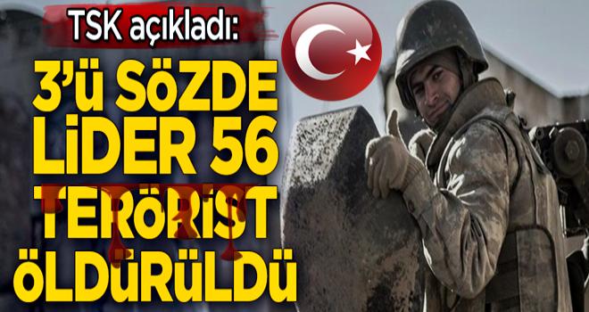 TSK'dan terör örgütü PKK'ya çok ağır darbe