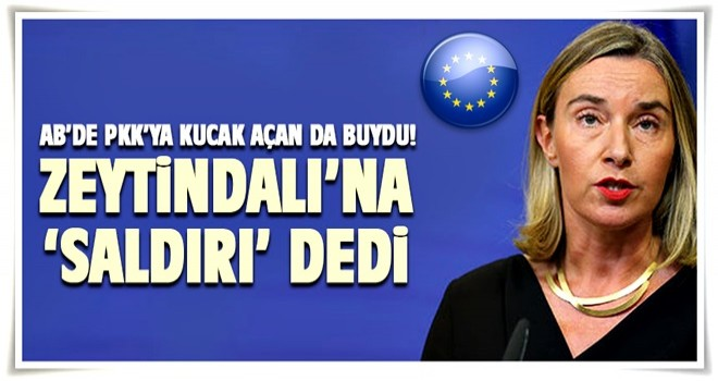 AB'den Türkiye'yi kızdıracak Afrin mesajı
