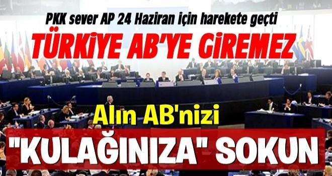 AB ve AP'de Türkiye aleyhine propagandası