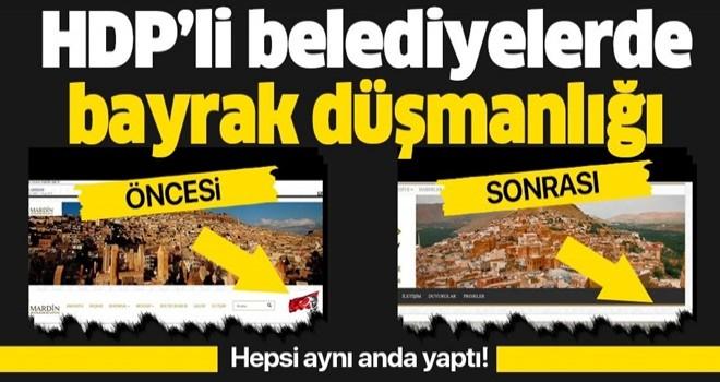 HDP'li belediyelerde skandal! Türk bayrağını sitelerinden sildiler .