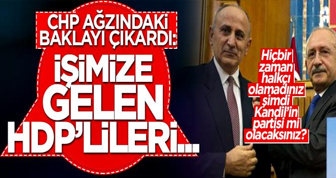 CHP'li Çiçek: HDP'lileri aday gösterebiliriz...
