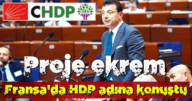 Avrupa'da HDP adına konuştu
