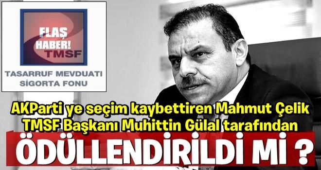 AK Parti'ye seçim kaybettiren Mahmut Çelik, TMSF Başkanı Muhiddin Gülal tarafından  ödüllendirildi mi?