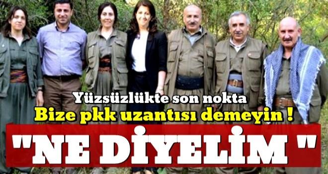 HDP'de yüzsüzlükte son nokta: Bize PKK'lı demeyin!