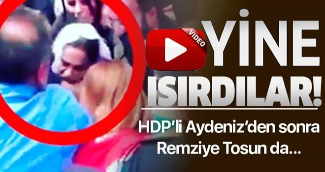 Yine saldırdılar! HDP'li Remziye Tosun, polisin kolunu ısırdı .