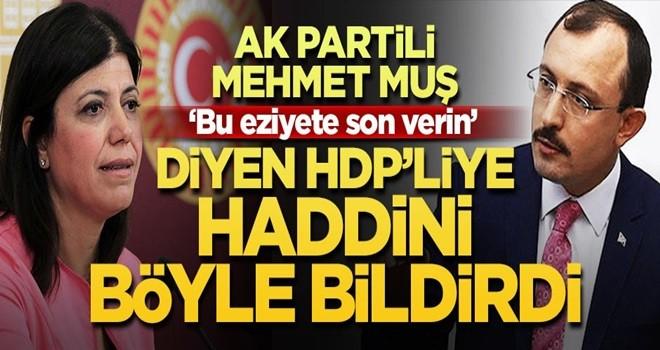 AK Partili vekil HDP'lilere haddini bildirdi!