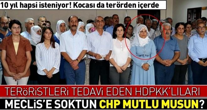 HDP'li Remziye Tosun'un teröristleri tedaviden 10 yıl hapsi isteniyor