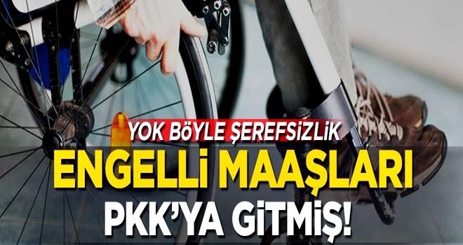 Yok böyle şerefsizlik! Engelli maaşları PKK'ya gitmiş