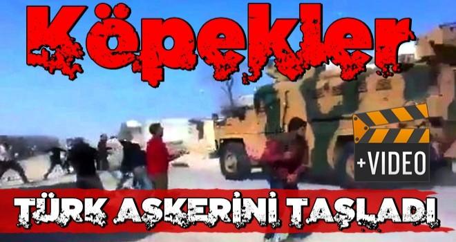 Hainler Türk askerini taşladı!