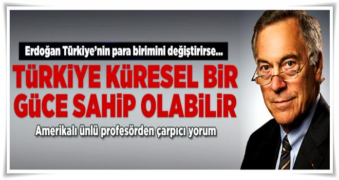 Hanke: Türkiye, altına endeksli para birimi uygulamasına geçmesi gerek  .
