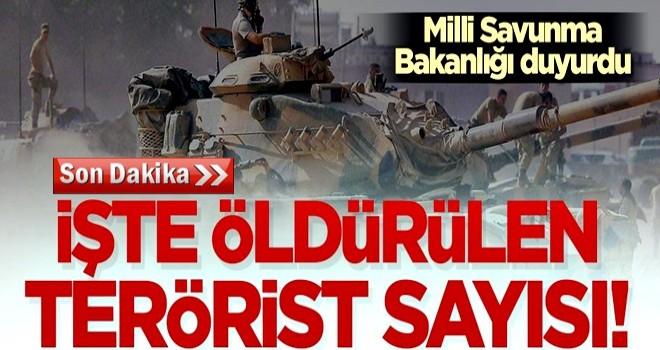 Milli Savunma Bakanlığı duyurdu! İşte öldürülen terörist sayısı