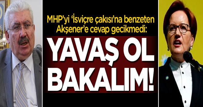 Meral Akşener'e cevap gecikmedi: Yavaş ol bakalım!