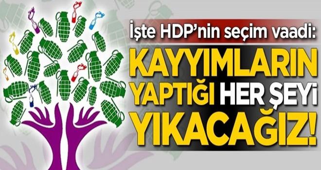 İşte HDP'nin seçim vaadi: Kayyımların yaptığı her şeyi yıkacağız