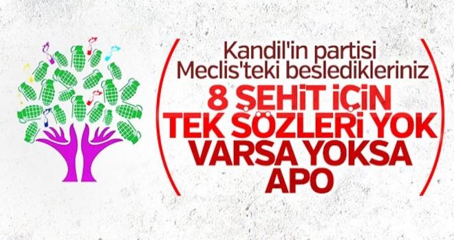 PKK'nın partisi HDP'nin derdi Öcalan