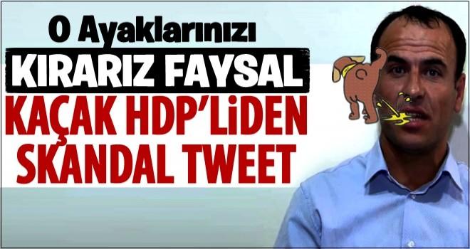 Kaçak HDP'liden ayaklanma çağrısı