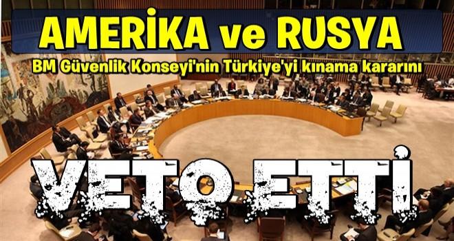 BMGK'da Türkiye'ye kınama oylaması, ABD ve Rusya'nın oyu ile veto edildi