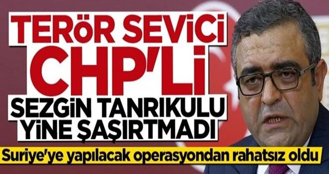 Barış Pınarı Harekatı terör sevici CHP'li Sezgin Tanrıkulu'nu rahatsız etti