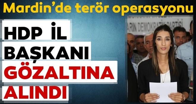 Mardin merkezli terör operasyonu