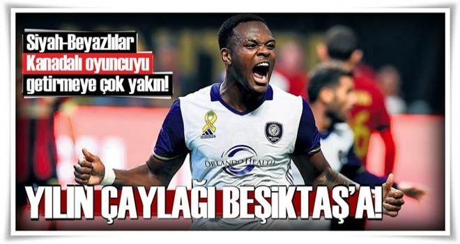Yılın çaylağı Beşiktaş'a