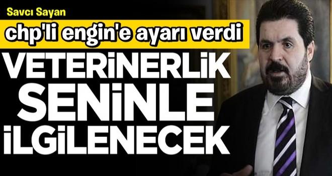 Savcı Sayan'dan CHP'li isme olay sözler: Veterinerlik seninle ilgilenecek