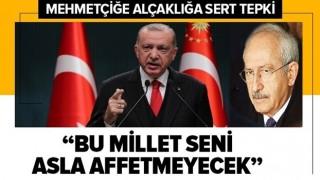 Başkan Erdoğan'dan TSK'ya hakaret açıklaması: Mehmetçiğine sahip çıkan bu millet Kılıçdaroğlu'nu asla affetmeyecek .